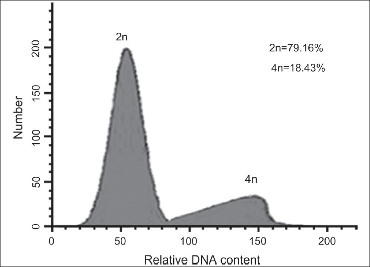 Figure 1 :DNA-histograms of nuclei isolated from shoots of a diploid