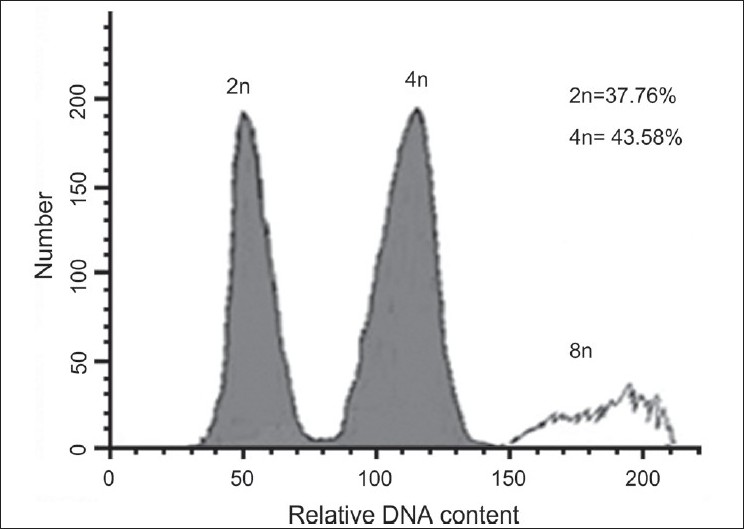 Figure 2 :DNA-histograms of nuclei isolated from shoots of a mixoploid