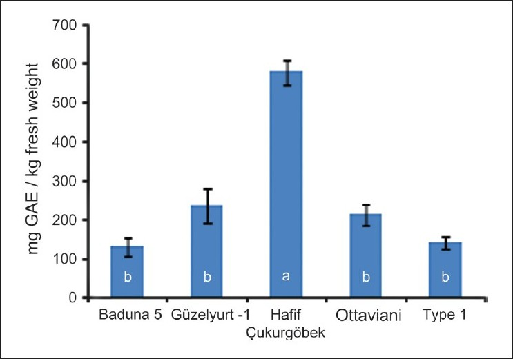 Figure 1 :Total phenolic content of several loquat cultivars grown in Dörtyol, Hatay, and Turkey. The bars represent standard deviations and different letters indicate statistically different means determined by the least signifi cance difference at 0.05
