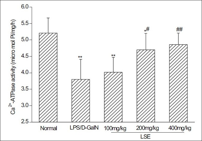 Figure 4 :Effect of LSE on liver mitochondrial Ca2+-ATPase activity in mice treated with LPS and D-GalN. Livers from LPS/D-GalN and different LSE groups were taken 12 h after the intraperitoneal injection with LPS (10 ìg/kg) and D-GalN (600 mg/kg). Liver mitochondria were then isolated and mitochondrial Ca2+-ATPase activity was determined according the protocol in the kit. Values represent mean ± SD of eight mice. *P < 0.05, **P < 0.01 compared with normal group. #P < 0.05, ##P < 0.01 compared with LPS/D-GalN group