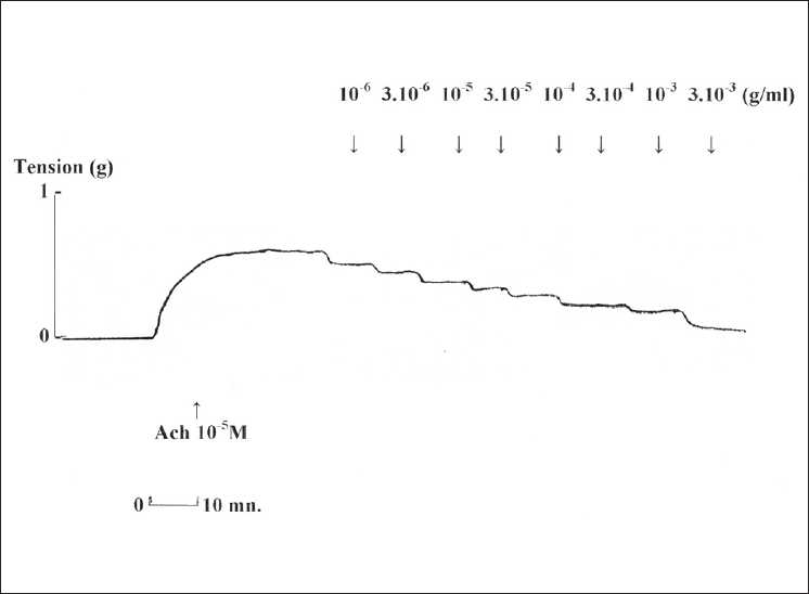 Figure 1: Representative trace from acetylcholine (ACh 10−5 M) precontracted rat isolated trachea showing cumulative dose-response to Allium sativum L. aqueous extract. Concentrations (10−6 to 3.10−3) are in g/mL