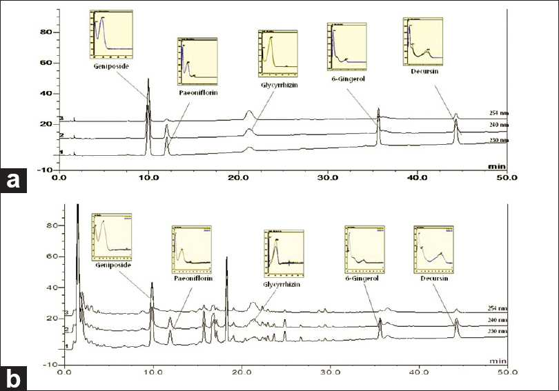 Figure 2: The HPLC chromatogram of the standard mixture (a) and Bangpuntongsung-san sample (b)