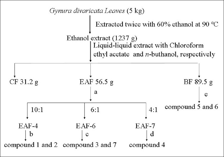 Figure 1: The procedure of extraction and isolation phenolic compounds from G. divaricata extracts. (a) Silica gel chromatograph eluted with a mixture of chloroform and methanol (from 100:0 to 4:1); (b) Sephadex LH-20 chromatograph eluted with a mixture of chloroform and methanol (1:1); (c) Sephadex LH-20 column eluted with methanol coupled with RP-ODS column gradient eluted with methanol-water (from 40% to 60%, v/v); (d) Sephadex LH-20 column eluted with methanol, (e) RP-ODS column gradient eluted with methanol-water (from 10% to 50%, v/v) coupled with RP-ODS column and isocratic eluted with methanol-water (18%, v/v)