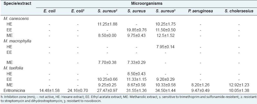 Table 1: Antibacterial activity of the crude extracts from Marcetia species using the diffusion method<sup>h</sup>