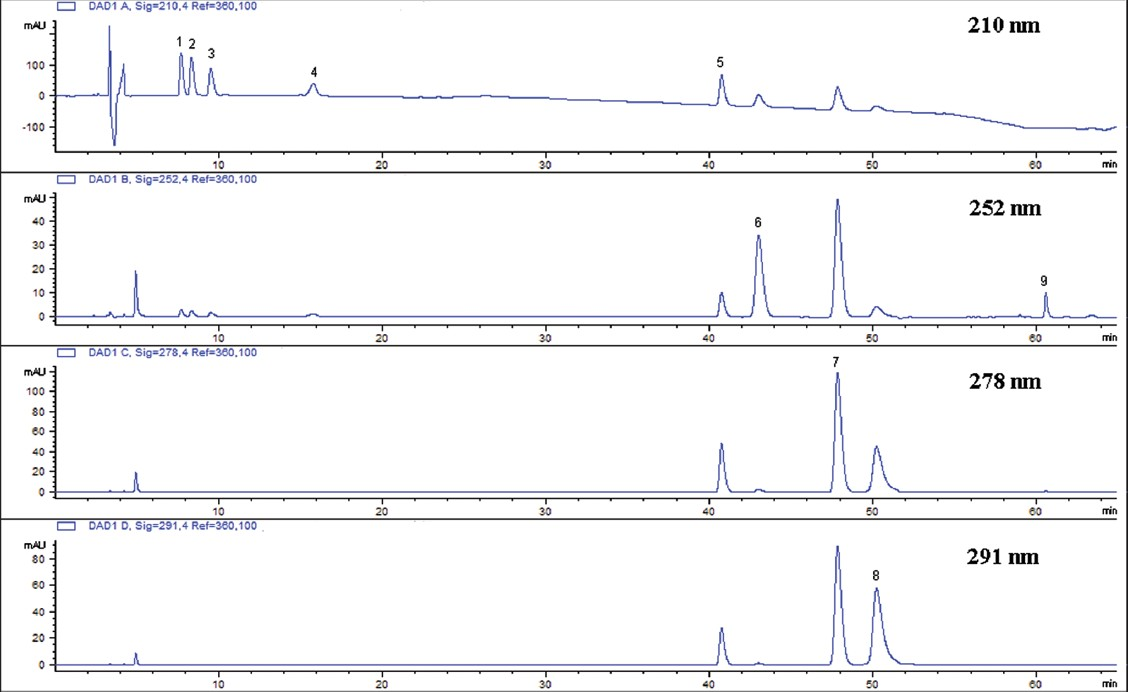 Figure 2: High-performance liquid chromatograph chromatogram of a mixed standard solution. 1. L-ephedrine, 2. D-pseudoephedrine, 3. L-methylephedrine, 4. amygdalin, 5. liquiritin, 6. cinnamic alcohol, 7. cinnamic acid, 8. cinnamic aldehyde, 9. glycyrrhizic acid