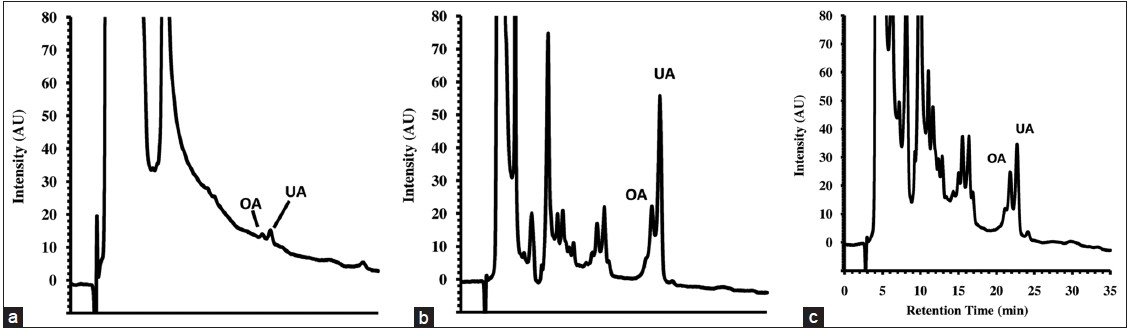 Figure 3: Typical HPLC chromatograms of apple peels extract (206 nm): (a) decoction; (b) tincture 48 h at 10% DER and (c) tincture 48h at 50% DER. OA = oleanolic acid; UA = ursolic acid