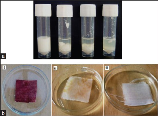 Hemostatic Milk Clotting And Blood Stain Removal