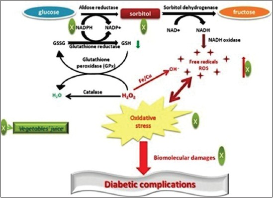 Figure 1: Mechanism of polyol pathway induced development of diabetic complications and effects of vegetables'juice on various stages