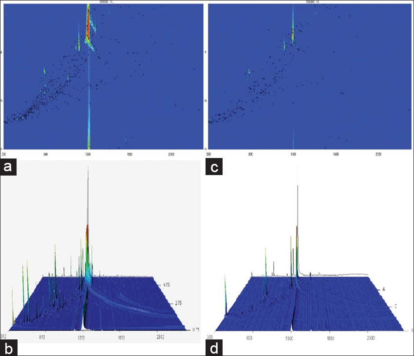 Figure 1: Comprehensive two-dimensional gas chromatography coupled with time-of-flight mass spectrometry and three-dimensional chromatograms of non-fumigated (a/b) and sulfur-fumigated (c/d) <i>Angelicae sinensis</i> Radix volatile oils