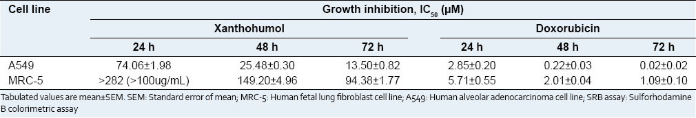 Table 1: IC<sub>50</sub> values (µM) of xanthohumol and doxorubicin on A549 human lung cancer cell line and
