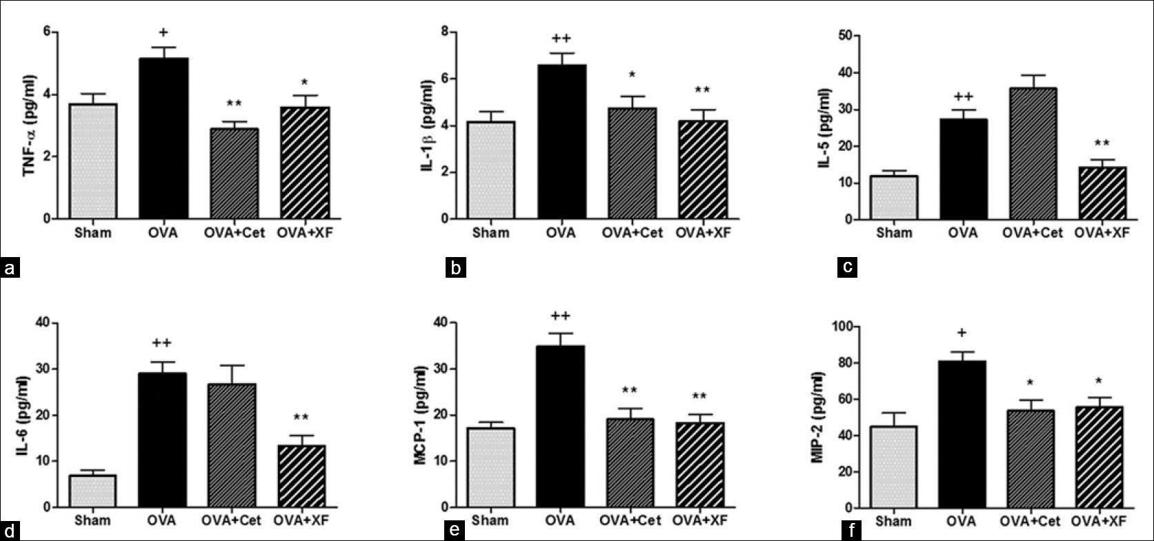 Figure 4: Effects of Xanthii Fructus on the serum levels of cytokines in the allergic rhinitis (AR) model. The concentrations of tumor necrosis factor-α (a), interleukine-1 beta (IL-1β) (b), IL-5 (c), IL-6 (d), monocyte chemoattractant protein-1 (e) and macrophage inflammatory protein-2 (f) in the sera of AR model were measured by mouse cytokine/chemokine magnetic bead panel kits. Independent experiments were performed (n = 8) and the columns and error bars represent the mean ± standard error. +P < 0.05 and ++P < 0.01, significantly different from the sham group. *P < 0.05 and **P < 0.01, significantly different from the ovalbumin group