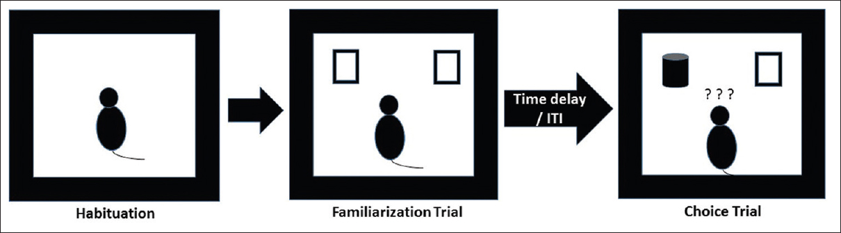 Figure 1: Illustration showing methodology of novel object recognition task for assessing episodic memory. Following a habituation period, animals were subjected to familiarization trial with two similar objects. After certain inter trial interval, choice trial was conducted using one familiar and one novel object
