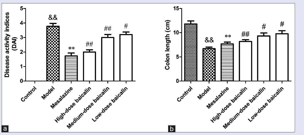 Figure 2: (a) Effect of baicalin on 2,4,6-trinitrobenzene sulfonic acid-induced disease activity index in ulcerative colitis rats. (b) Effect baicalin on 2,4,6-trinitrobenzene sulfonic acid-induced colon length (cm) in ulcerative colitis rats