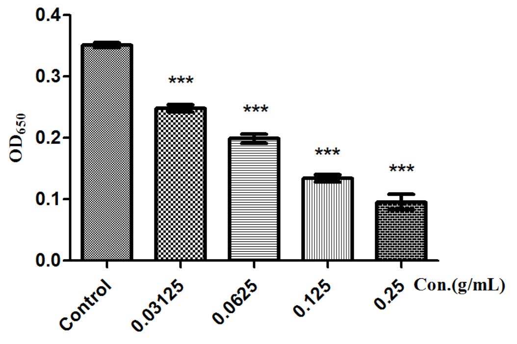 Figure 5: Biofilm formation of <i>P. aeruginosa</i> in the presence of <i>F. suspense</i>. Total biofilm amount at different <i>F. suspense</i> extract concentrations has distinguished difference. Values are presented as mean ± SD, <i>n</i> = 3