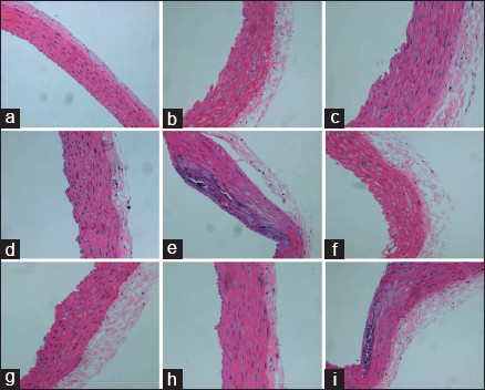 Figure 1: Histopathological observation of atherosclerotic patholoty alteration in rat aortas (hematoxylin–eosin staining). (a) Normal control group, rats were fed a normal diet and received no other treatment. (b) Atorvastatin intervention group, rats were induced to liver injury complicated with atherosclerosis; (c) Panax notoginseng saponins intervention group, rats were induced to liver injury complicated with atherosclerosis; (d) atorvastatin combined with Panax notoginseng saponins intervention group, rats were induced to liver injury complicated with atherosclerosis; (e) normal saline intervention group, rats were induced to liver injury complicated with atherosclerosis; (f) atorvastatin intervention group, rats were induced to atherosclerosis with no liver injury; (g) Panax notoginseng saponins intervention group, rats were induced to atherosclerosis with no liver injury; (h) atorvastatin combined with Panax notoginseng saponins intervention group, rats were induced to atherosclerosis with no liver injury; (i) normal saline intervention group, rats were induced to atherosclerosis with no liver injury
