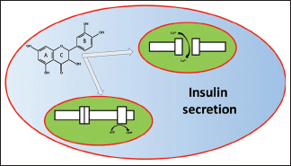 Influence Of Flavonoids On Mechanism Of Modulation Of Insulin