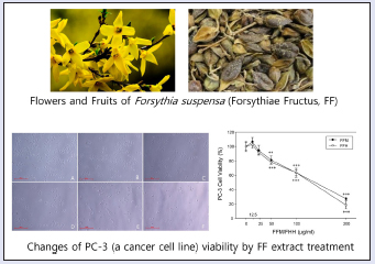 A study of the anti-cancer effects of the hexane fraction of