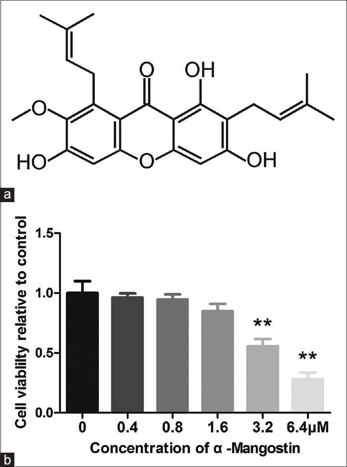 Figure 1: No cytotoxicity of alpha-mangostin was found to RAW264.7 cells at the concentration below 1.6 μM. (a) The chemical structure of alpha-mangostin. (b) The cytotoxicity of alpha-mangostin on RAW264.7 cells were determined by cell counting kit-8 assay at 96 h (**<i>P</i> < 0.01)