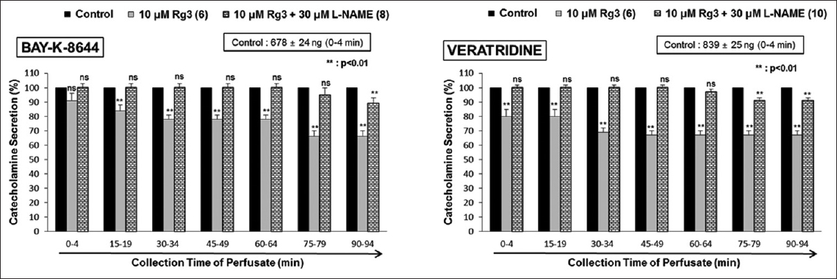 Figure 6: Effects of Rg3 plus L-NAME the secretion of CA produced by Bay-K-8644 (left) and veratridine (right) in the isolated rat adrenal medullae. The release of CA evoked by infusion of Bay-K-8644 (100 &#956;M) and veratridine (50 &#956;M) was produced at 15-min intervals during concurrent perfusion of Rg3 (10 &#956;M) plus L-NAME (30 &#956;M) for 1.5 h. Significant difference was statistically analyzed by comparing the value of the control with Rg3-treatment only group or treatment group with Rg3&#43;L-NAME. Other legends are identical to those of Figure 1. &#42;&#42;<i>P</i> &#60; 0.01. Rg3: Ginsenoside-Rg3; ns: Statistically nonsignificant; CA: Catecholamines; Ang II: Angiotensin II; L-NAME: N<sup>&#969;</sup>-nitro-l-arginine methyl ester; ACh: Acetylcholine