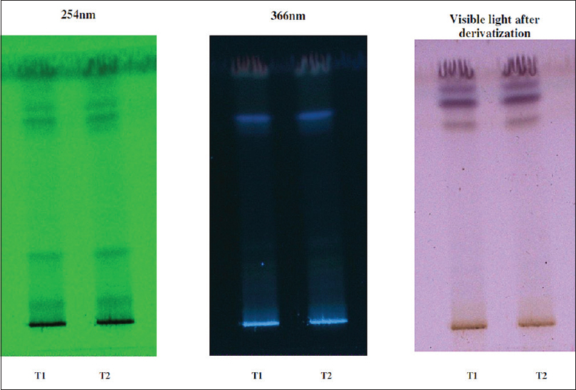 Figure 1: Thin-layer chromatography profile of mucilage of aqueous <i>Althaea officinalis</i> L. track 1 and 2 at 254 nm, 366 nm, and visible light