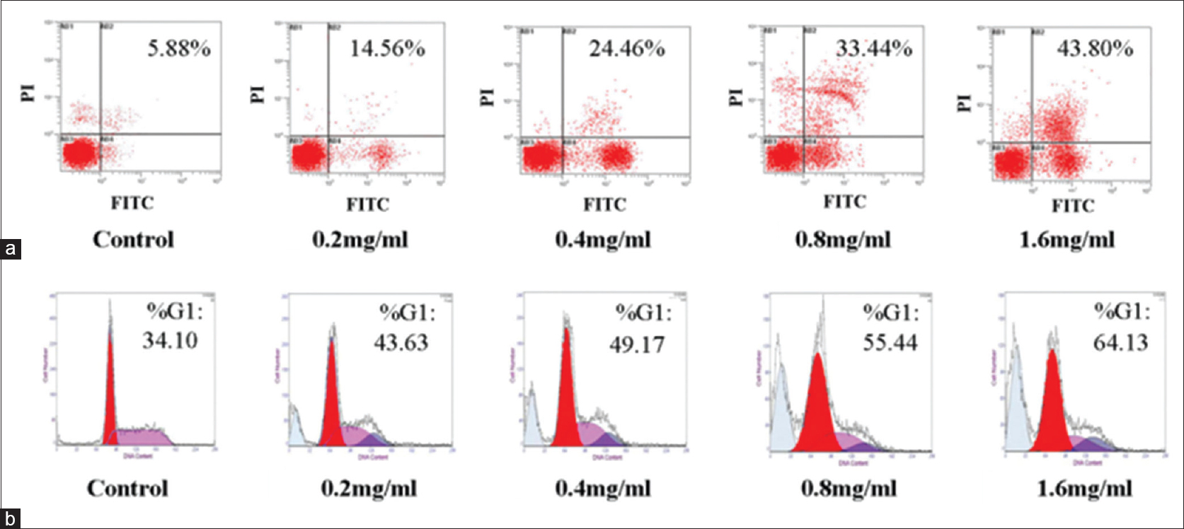 Figure 2: The effects of EE treatment on apoptosis and cell cycle distribution of LCC cells. (a) The apoptosis analyses in LCC cells treated with EE at the indicated concentrations for 24 h. (b) The proportions of LCC cells in the G0/G1 phase treated with EE are presented. The group without EE treatment was a control. LCC: Large cell carcinoma; EE: <i>Euphorbiaceae</i> extract