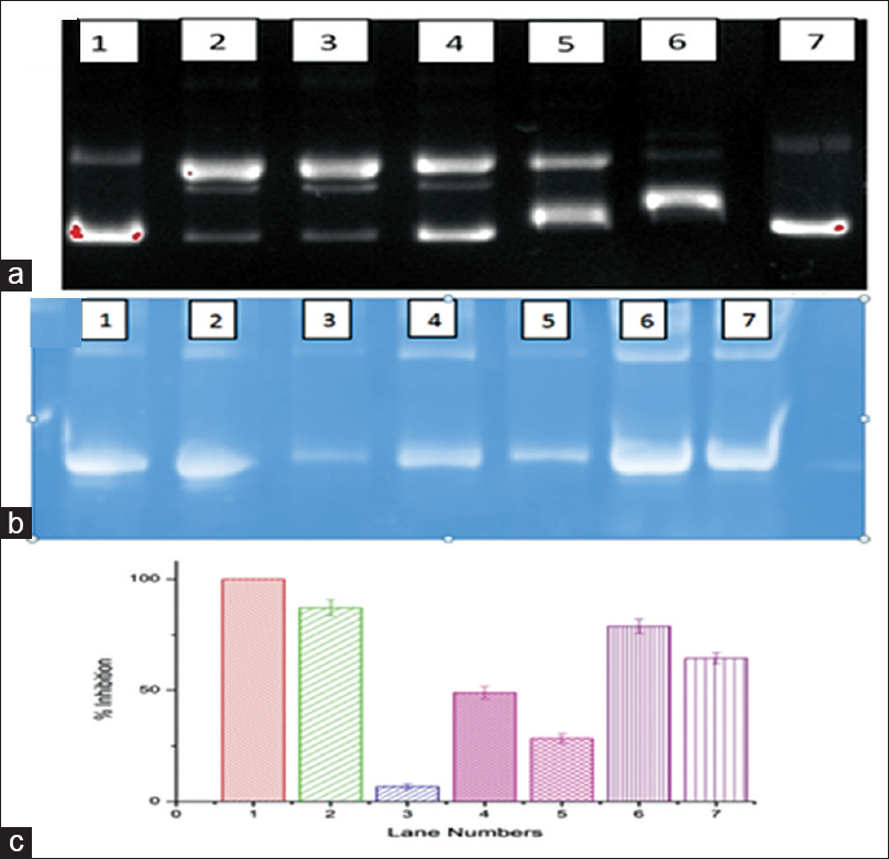 Figure 2: The macromolecule protection by electrophoretic method; (a) DNA; Lane 1 – reference control, 2 – negative control, 3 – methanol extract (10 μg), 4 – methanol extract (20 μg), 5 – ethyl acetate (10 μg), 6 – ethyl acetate (20 μg) and 7 – positive control. (b) Protein; Lane 1 – reference control, 2 – positive control 3 – negative control, 4 – methanol fraction (20 μg) 5 – methanol extract (10 μg), 6 – ethyl acetate (20 μg), 7 – ethyl acetate (10 μg). (c) Protein band density; the band density for protein oxidation inhibition (%) lane numbers is same as column number at X axis. Error bar represents mean ± standard deviation of triplicates, and test samples are significantly different from control at <i>P</i> < 0.05