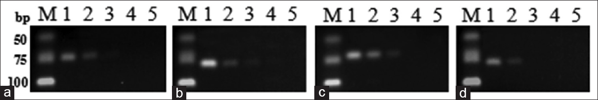 Figure 3: Sensitivity test for the specific primer sets. (a) PEA; (b) PBT; (c) PSS; (d) PEC; M: Deoxyribonucleic acid marker; Lane 1~4: 10 ng/µL, 1 ng/µL, 0.1 ng/µL, 0.01 ng/µL of Deoxyribonucleic acid template; Lane 5: Negative control