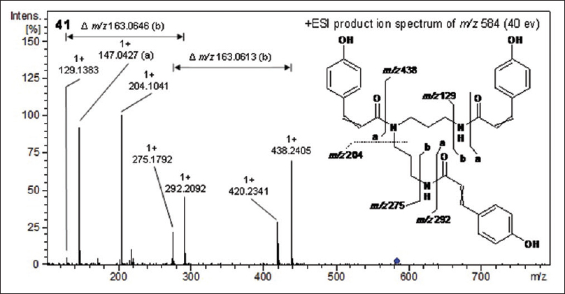 Figure 4: Product ion spectrum and of proposed structure of 41. Solid lines indicate successive dissociation of the ion and are to be read from left to right. The dashed line indicating formation of <i>m/z</i> 204 marks an independent dissociation