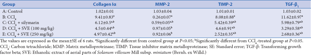 Table 5: Effect of ethanolic extract of aerial parts of <i>Solanum villosum</i> Mill subsp. miniatum (Bernh. ex Willd.) on gene fibrosis markers in carbon tetrachloride-induced liver fibrosis in rats