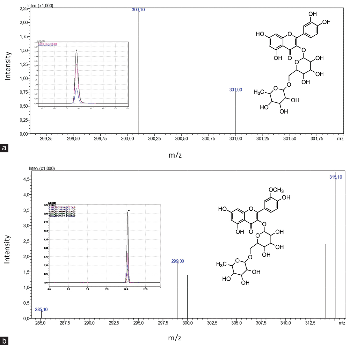Figure 8: Liquid chromatography-mass spectrometry/mass spectrometry chromatogram and mass spectra of rutin (a) and isorhamnetin 3-O rutinoside (b)
