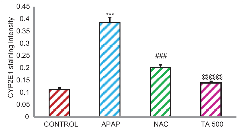 Figure 4: This graph showed the cytochrome P450 2E1 expression levels of experimental rats. Results were expressed as mean ± standard error of the mean. ***<i>P</i> < 0.001 statistically significant as compared with Control rats; <sup>###,@@@</sup><i>P</i> < 0.001 statistically significant as compared with acetaminophen rats