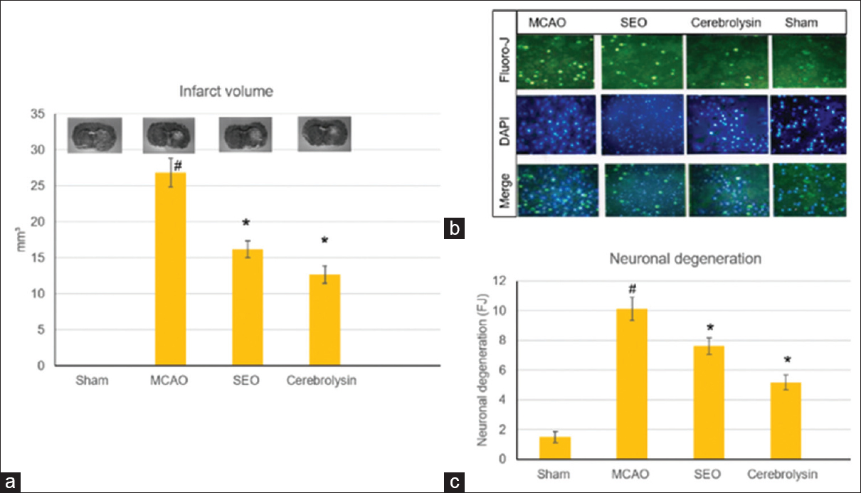 Figure 2: Infarct volume and neuronal degeneration prompted by the treatments with sandalwood oil (100 mg/kg, i.p.) and cerebrolysin (7.5 mg/kg, i.p.) on cerebral ischemia induced via MACO in mice: (a) infarct volume and (b and c) neuronal degeneration. Data are expressed as mean ± standard error of the mean, <i>n</i> = 10. <sup>#</sup>significantly different from the sham-operated group, *significantly different from the MACO ischemic group at <i>P</i> < 0.05 using analysis of variance followed by Tukey's <i>post hoc</i> test
