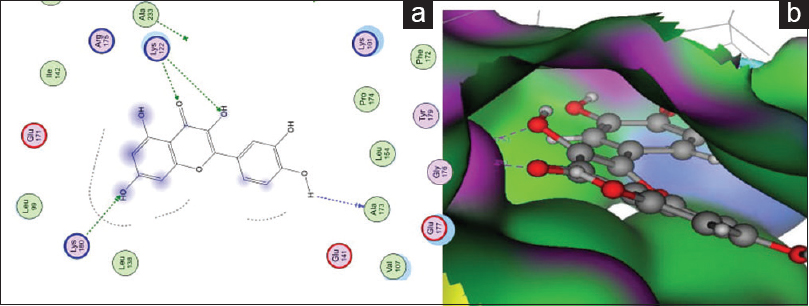Figure 3: (a) 2D; binding modes and (b) 3D mapping surface of Quereetin with Aurora B