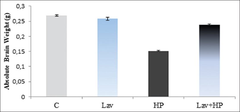 Figure 3: Variations in brain weights of mice after 6 weeks of treatments in controls (c), (Lav) mice receiving only the essential oil of <i>Lavandula officinalis,</i>(hydrogen peroxide) mice treated with hydrogen peroxide, (Lav + hydrogen peroxide) mice pretreated with Lav then treated with hydrogen peroxide. Values correspond to the mean of 6 measurements ± standard deviation. ** <i>P</i> < 0.05 versus control group; ++: <i>P</i> <0.05 versus HP group