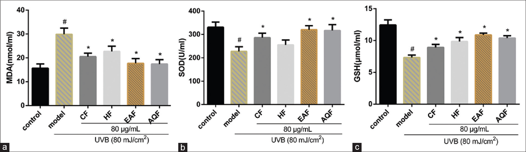 Figure 7: Effects of <i>Gracilaria lemaneiformis</i> extracts on the MDA, SOD, and GSH levels in HaCaT cells exposed to UVB. Cells were incubated with 80 μg/mL extracts for 24 h and irradiated by 80 mJ/cm<sup>2</sup> UVB. The activities of MDA (a), SOD (b), and GSH (c) were then measured using a reagent kit. Versus the control and <i>P</i> < 0.05 indicated by<sup>#</sup>, versus UVB model group and <i>P</i> < 0.05 indicated by*. UNB: Ultraviolet B; MDA: Malondialdehyde; SOD: Superoxide dismutase; GSH: Glutathione