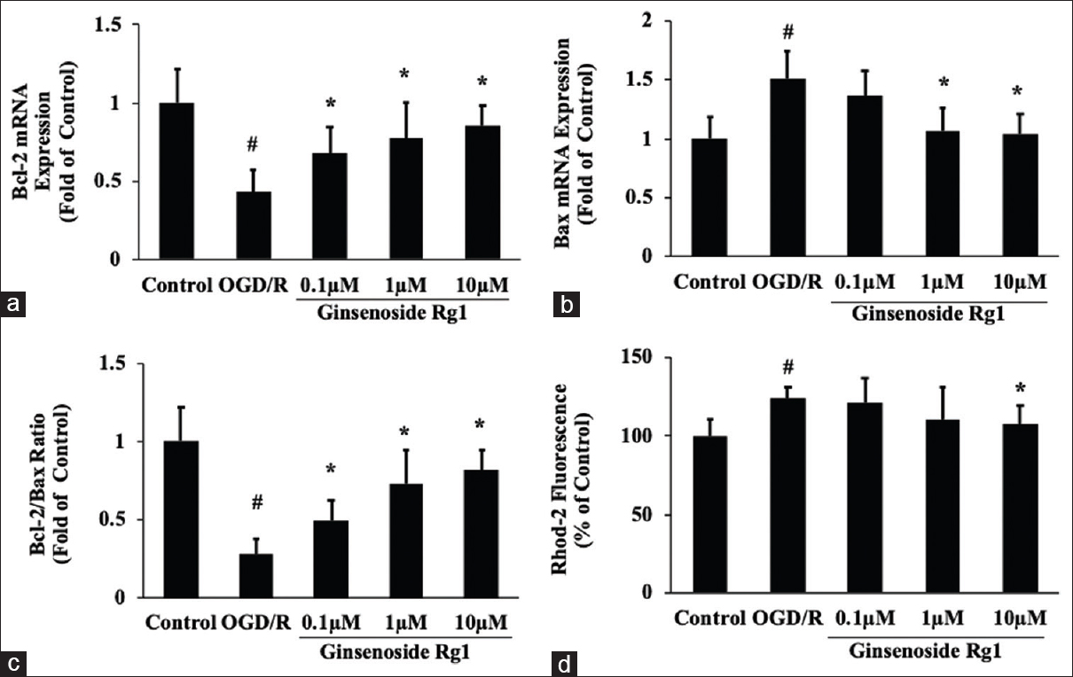 Figure 4: Effects of ginsenoside Rg1 on apoptosis related genes expression and cytosolic Ca<sup>2+</sup> concentration in neurons after oxygen–glucose deprivation/reoxygenation injury. (a) The expression of Bcl-2 gene was measured by real-time-polymerase chain reaction. (b) The expression of Bax gene was measured by real-time-polymerase chain reaction. (c) The ratio of Bcl-2/Bax gene was measured by real-time-polymerase chain reaction. (d) Cytosolic Ca<sup>2+</sup> was measured by Rhod-2 fluorescence staining. Data are shown as mean ± standard deviation <i>n</i> = 6.<sup>#</sup><i>P</i> < 0.05 compared with control; *<i>P</i> < 0.05 compared with oxygen–glucose deprivation/reoxygenation