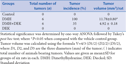 Table 1: Effect of dieckol on total number of tumors, tumor incidence, and tumor volume of control and experimental animals